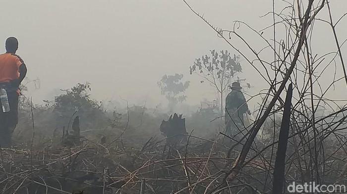 Kebakaran lahan dan hutan (karhutla) di Inhu Riau