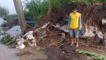 Banjir Jebol Tanggul, Puluhan Rumah di Kediri Terendam