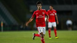 Diminati Banyak Klub, Joao Felix Nikmati Masa-masa di Benfica