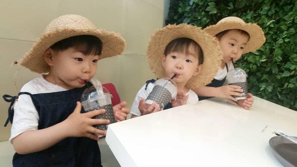 Mengintip Daehan, Minguk, Manse Saat Bikin Kimchi Hingga Makan Es Krim