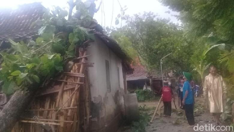 Puting Beliung Landa Ponorogo, 4 Rumah Rusak Tertimpa Pohon