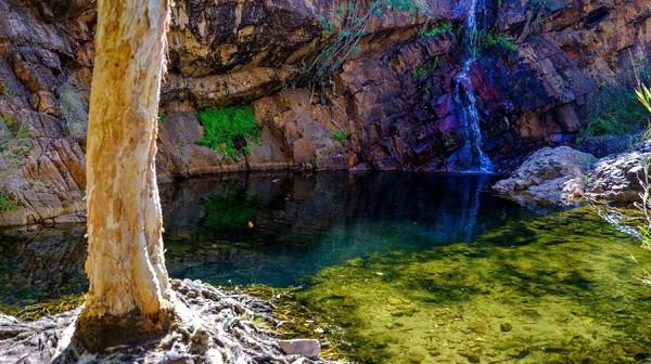 Mata air Molly Springs di Wyndham. Road trip dengan jalur Coral Coast memang menawarkan pemandangan menakjubkan (Tourism Western Australia)