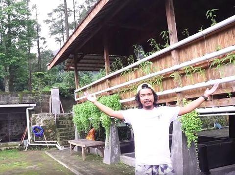 Dikelilingi Pinus, Dodit Mulyanto Tunjukan Rumahnya di Hutan