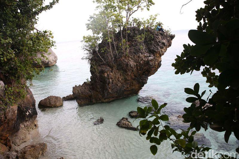 Pemuda-pemuda setempat menceritakan tentang pantai indah di ujung Pulau Mandioli. Pasir putih terhampar di depan air laut yang bersih, inilah Pantai Tanjung Mangga. (Danu Damarjati/detikcom)