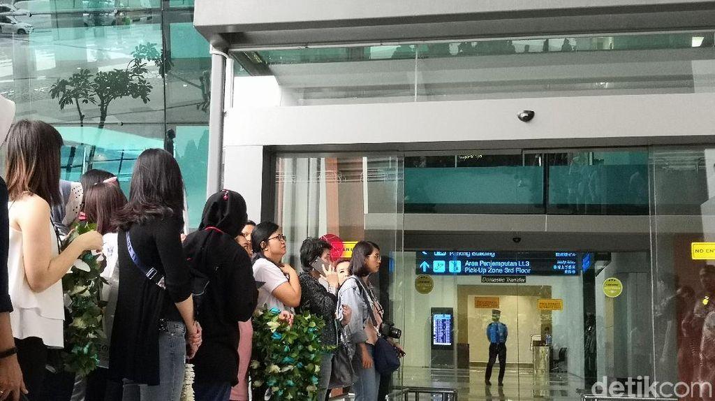 Antusias Banget! Fans Rela Menanti di Bandara Soetta Demi Sambut Boyzone