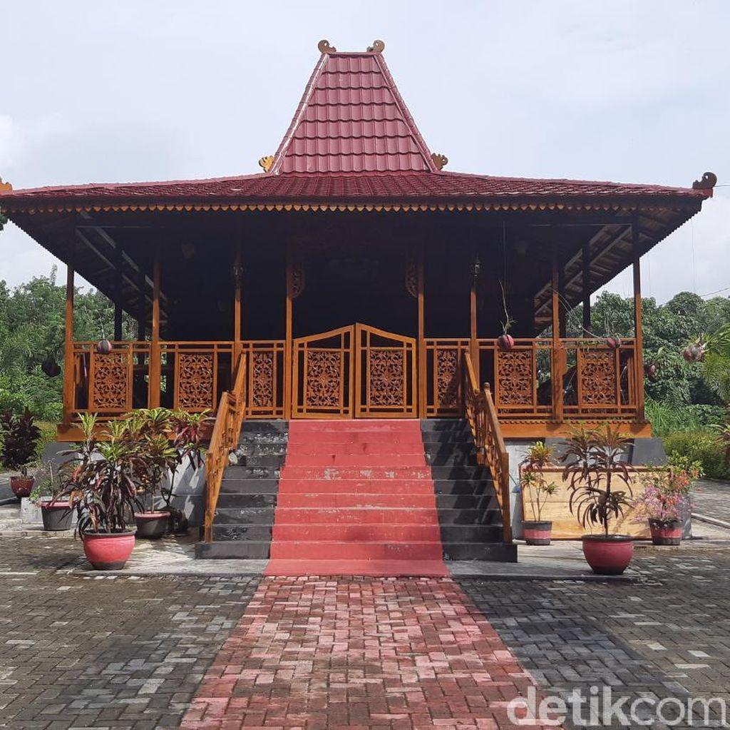 Ada Gelar Adat dan Rumah untuk Jokowi di Hutan Karet Belanda