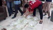 KKP Gagalkan Penyelundupan Ratusan Ekor Benih Ikan Arwana ke Malaysia