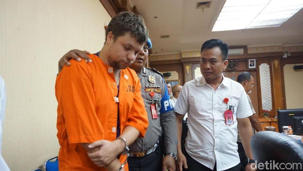 WN Rusia Penyelundup Orang Utan ke Bali Jadi Tersangka