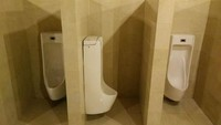 Arsiteknya kebanyakan main The Sim dan lupa memutar posisi urinoir. Istimewa/Dok. Boredpanda.