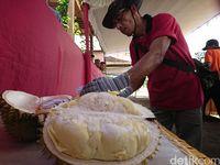 Cari Varietas Unggul,Trenggalek Gelar Kontes Durian