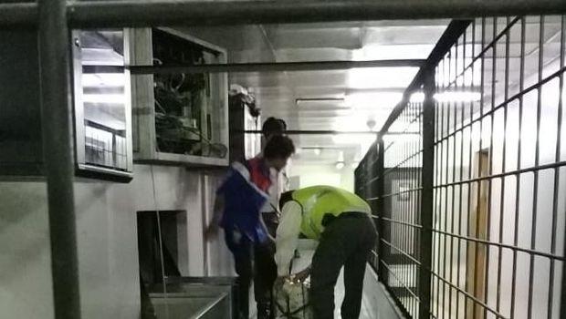 Sriwijaya Air layani check-in manual karena listrik dipadamkan pengelola Bandara Soetta