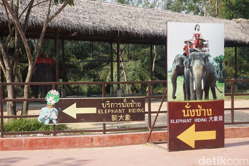 Suanthai Pattaya terletak di Chon Buri, Pattaya, Thailand. Kalau dari Bangkok, sekitar 2 jam perjalanan (Shinta/detikcom)