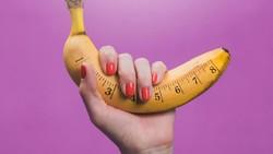 Ukuran Mr P Terlalu Besar, Menguntungkan atau Merugikan?