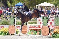 Nayel Nassar dengan kuda kesayangannya.