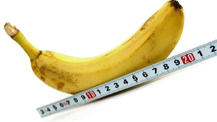Ilustrasi ukuran rata-rata Mr P. Foto: iStock