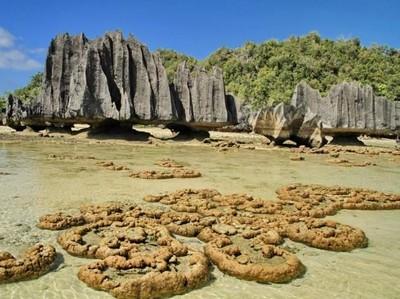 Pantai Namlol yang Unik Ini Ada di Raja Ampat