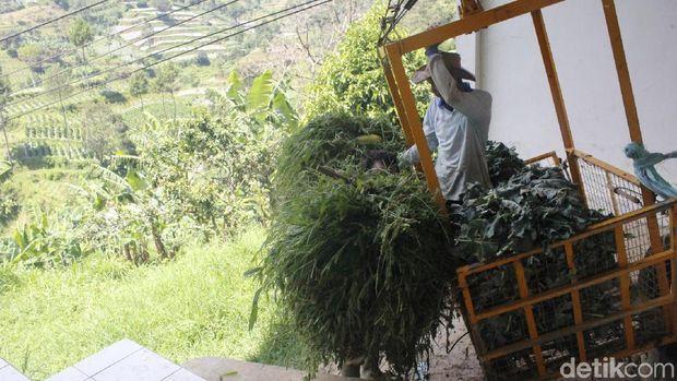 Warga Suntenjaya Lembang Gunakan Gondola Angkut Sayuran
