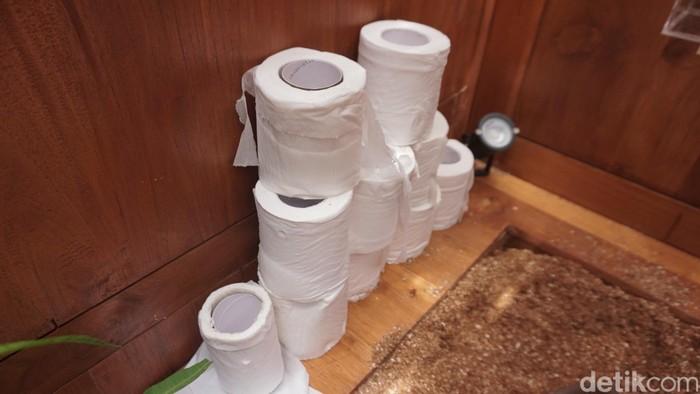 Meski tidak ada air, tetap ada tisu kok jadi nggak perlu khawatir tidak higienis. (Foto: Khadijah Nur Azizah/detikHealth)