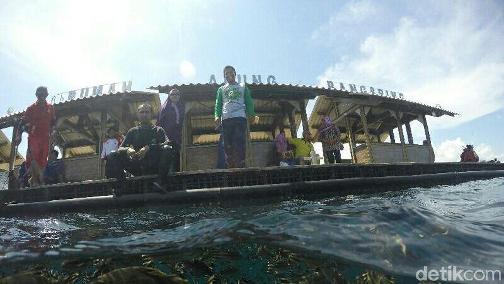 Besok, Menteri Susi Buka Banyuwangi Underwater Festival