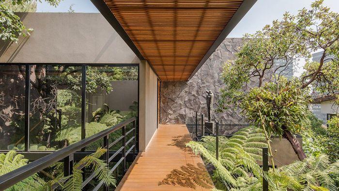 Ada taman yang cukup luas di bagian luar rumah, ada teras yang terbuat dari lantai kayu menghubungkan area luar dan dalam. Istimewa/mansionglobal.com.