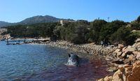 (SeaMe Sardinia/CNN)