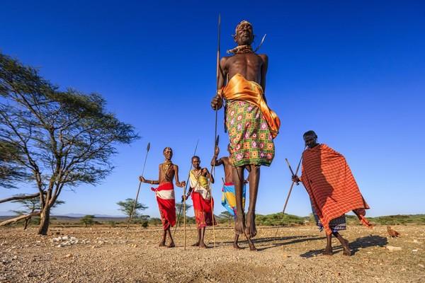 Perburuan singa oleh Suku Massai diadakan secara berkelompok, bisa mencapai 10 orang. Dalam kelompok tersebut dibagi menjadi dua kubu yaitu Ilmorijo (prajurit tua) yang menjadi komandan, serta Ilbarnot (prajurit muda) para pria yang sedang dites (iStock)
