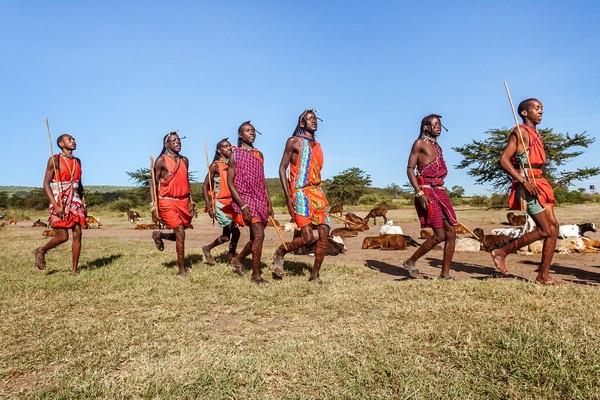 Perburuan singa oleh suku Maasai bisa memakan waktu sampai 10 hari lamanya (iStock)