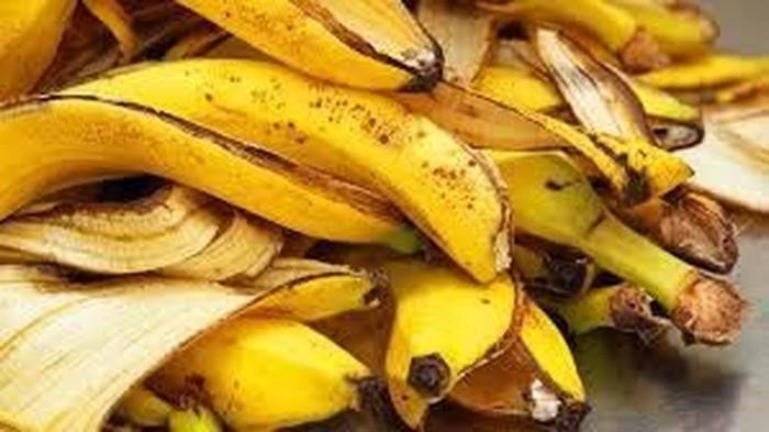 Benarkah makan kulit pisang bisa bantu turunkan berat badan? (Foto ilustrasi: Istimewa)