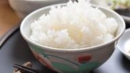 Ini Alasan Mengapa Tak Boleh Konsumsi Nasi Sisa Kemarin