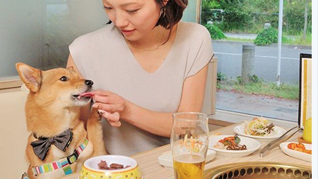 Asyik! Restoran BBQ Ini Perbolehkan Pengunjung Makan Bareng Anjing Peliharaan