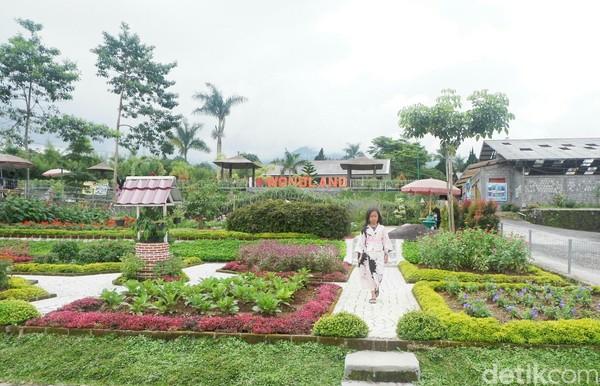 Liburan ke Wonosobo, Jawa Tengah kamu harus singgah ke Wonoland. (Uje Hartono/detikcom)