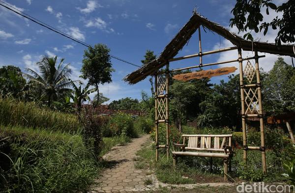 Selain Kawah Ijen, Banyuwangi juga punya Desa Wisata Osing Kemiren yang cantik dan menarik. Tempatnya eksotis dan instagramable. (Rachman Haryanto/detikcom)