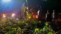 Longsor dan Pohon Tumbang di Perbatasan Bandung-Garut, Lalin Terganggu