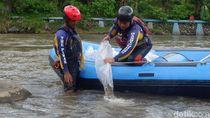 Polres Karanganyar Tebar Ribuan Benih Ikan di Telaga Lokasi Karantina