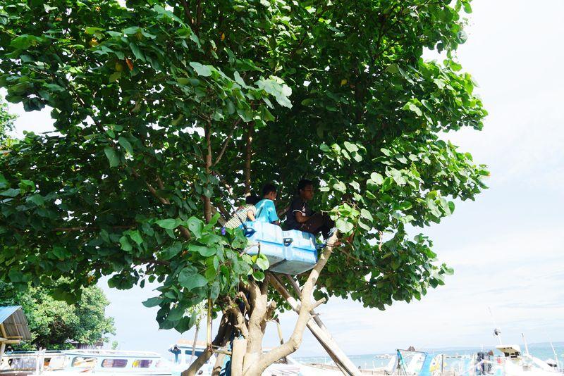 Pemandangan menarik ini bisa kamu temukan di Pelabuhan Tanjung Luar, Lomok Timur. (Syanti/detikcom)