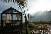The Kaldera, Glamping Danau Toba yang Dikunjungi Jokowi