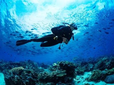 Dilarang Jomblo dan Hal Lain yang Harus Kamu Tahu Saat Diving