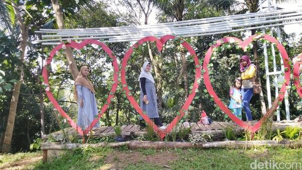 Wisata Sayang Kaak berada di Desa Handapherang, Kecamatan Cijeungjing, Kabupaten Ciamis, Jawa Barat. Obyek wisata ini masih terbilang baru dan cukup hits di kalangan anak muda (Dadang Hermansyah/detikcom)