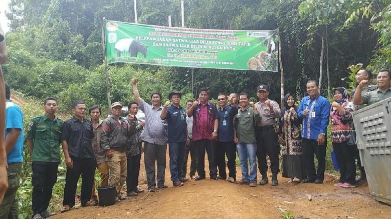 BKSDA Jambi Lepas Liarkan Tapir-Kukang Hasil Buruan Warga