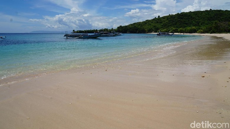 Pantai Pink di Lombok Timur (Syanti/detikcom)