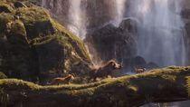 Disney Hidupkan Adegan dari Versi Animasi di Trailer The Lion King