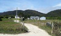 Perumahan penduduk di Pulau Mocha (Google Maps/Rodolfo Saldias)