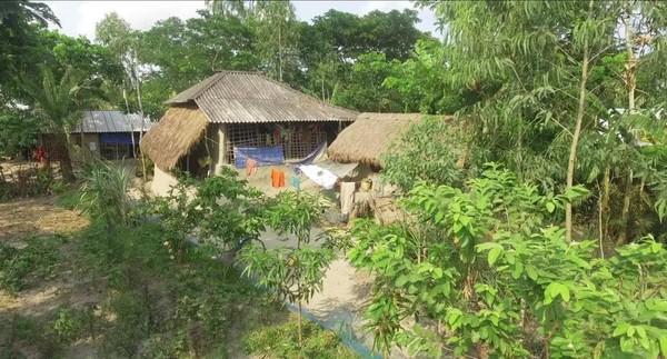 Ada di Delta Gangga, Sundarbans adalah hutan bakau terbesar di dunia, hutan ajaib dengan ratusan pulau dan membentang lebih dari 10.000 km persegi. Selama ratusan tahun, predator ini telah hidup berdampingan dengan orang-orang setempat (BBC Travel)