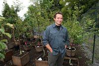 Keren! Pohon Ajaib Ini Hasilkan 40 Jenis Buah Mulai Plum hingga Almond