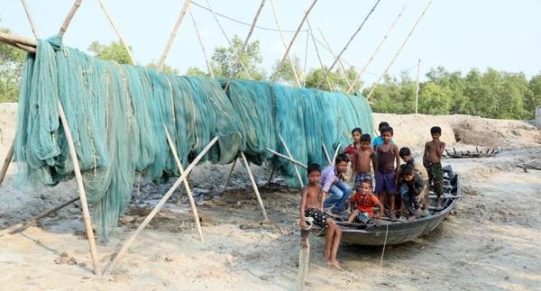 Di seluruh Sundarbans, lebih dari 4,5 juta penduduknya bertahan hidup dengan memancing di aliran sungai atau masuk ke hutan mengumpulkan kayu atau madu. Setiap tahun harimau menyerang hingga 60 orang dan kebanyakan dari korban tidak selamat (BBC Travel)