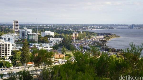 Kings Park & Botanical Garden sebagai termpat wisata di Perth dulunya merupakan tempat keramat suku Aborigin dan tempat pohon Baobab berusia 750 tahun (Ahmad Masaul Khoiri/detikcom)