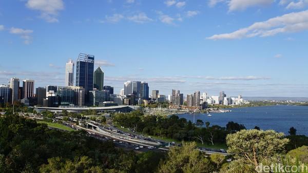 Lanskap gedung Kota Perth menjadi latar yang epik ketika Anda berfoto di Kings Park & Botanical Garden Perth. Kings Park lebih besar dari Central Park New York (Ahmad Masaul Khoiri/detikcom)