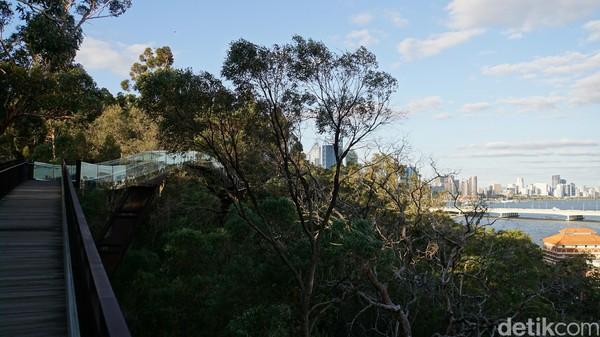 Di sini dapat dilihat pula Sungai Swan dan Canning. Sebelum senja, adalah waktu yang sangat populer (Ahmad Masaul Khoiri/detikcom)