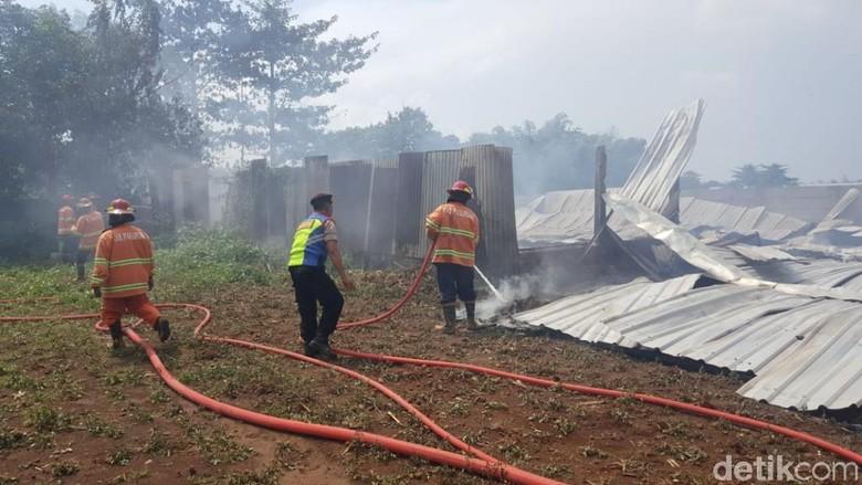 Diduga Korsleting, Gudang Kapuk di Pasuruan Terbakar Hingga Ambruk