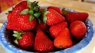 Daftar 10 Makanan Kaya Antioksidan yang Bantu Tubuh Lawan Penyakit